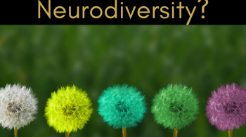"Gold writing on a Black background reading: ""What is Neurodiversity?"" Below that an image of five dandelion heads in a row, coloured white, yellow, blue, green and purple on a blurred green background."